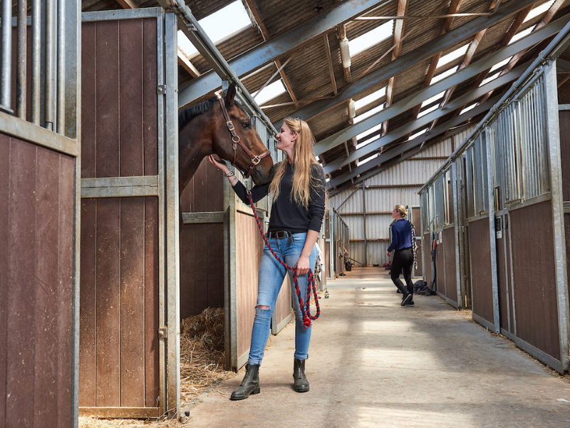 horse stables paardenplaats from Aeres University of Applied Sciences at Aeres Farms